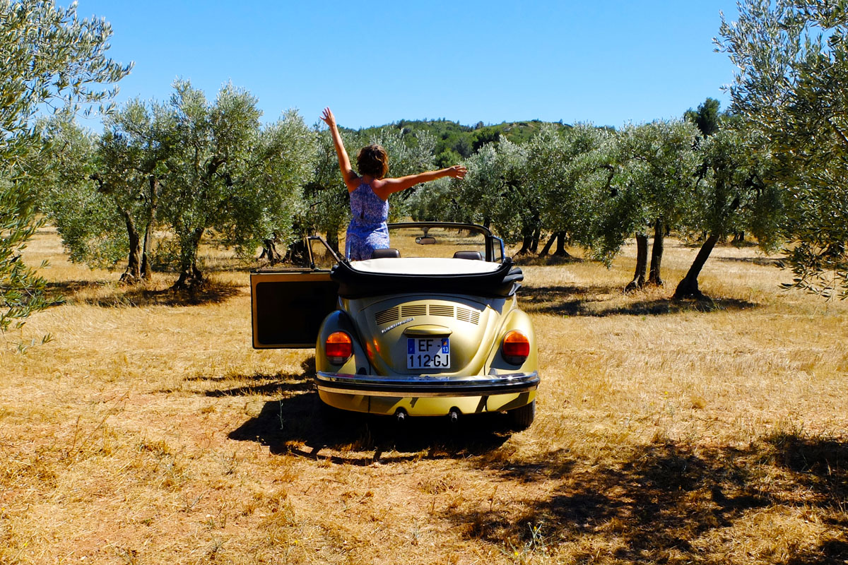 Discover Provence in a classic convertible